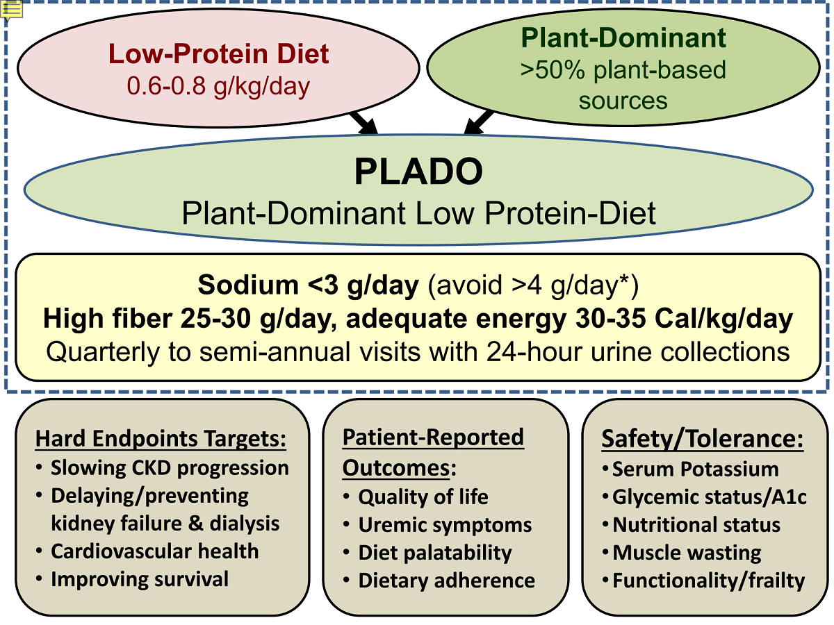 Plant Dominant Low Protein Diet For Conservative Management Of Chronic Kidney Disease V1 Preprints